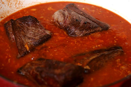 beef short ribs braised in tomato sauce